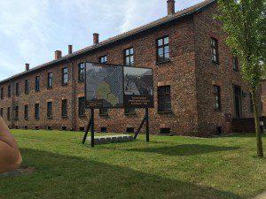 WYD - Auschwitz 3