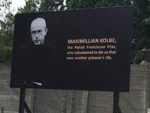 WYD - Maximillian Kolbe